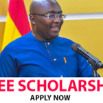 BAWUMIAH INITIATIVE'S SCHOLARSHIP AND HOW TO APPLY